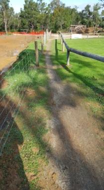 Tennis fence